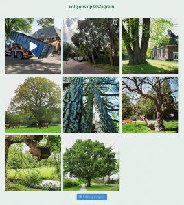 Gooische Bomen Instagramfeed
